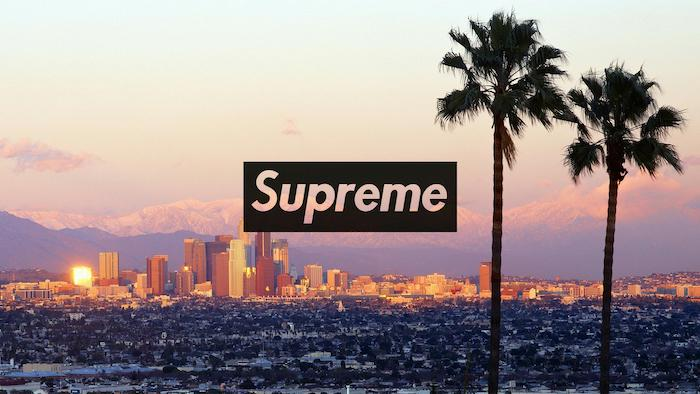 los angeles skyline two tall palm trees at the forefront supreme wallpaper iphone supreme logo at the center in black and white
