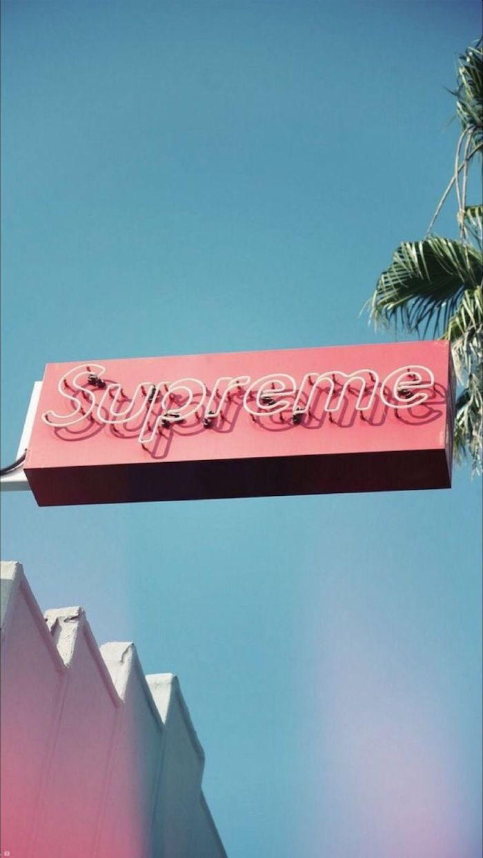 supreme wallpaper girl photo of a blue sky with tall palm tree pink supreme sign