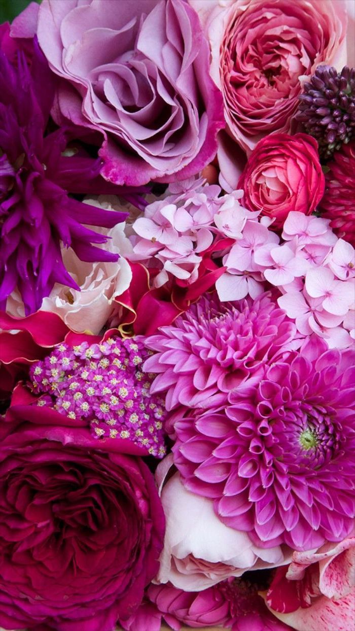 close up photo of different flowers floral iphone wallpaper in different shades of pink purple