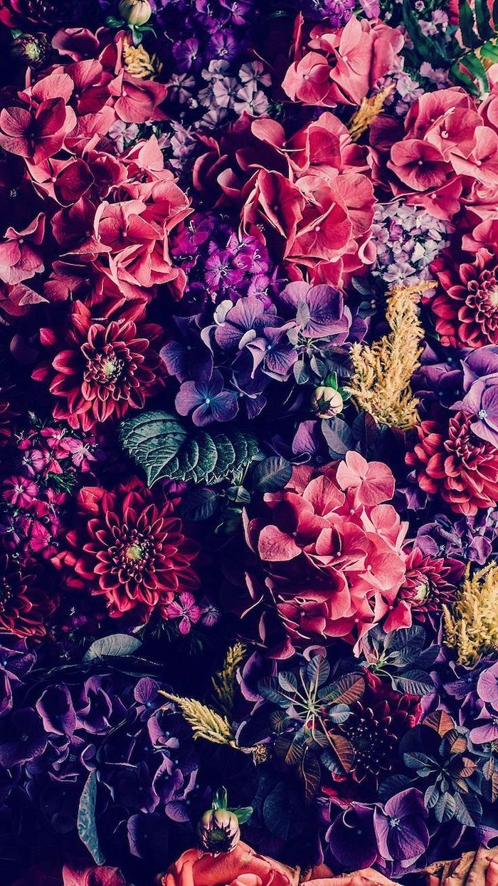 close up photo of different flowers in different shades floral iphone wallpaper pink purple orange