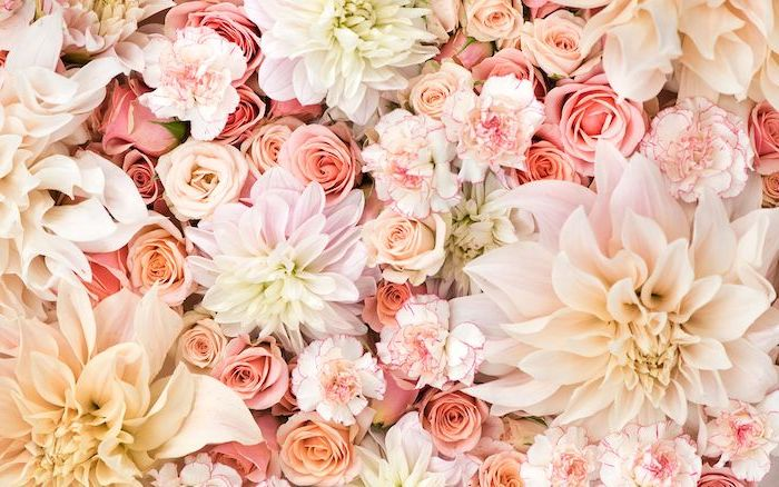 close up photo of flower arrangement flower background images roses flowers in different shades of pink white