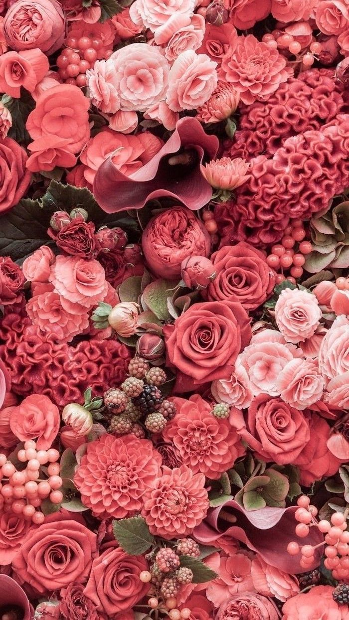 close up photo of flower arrangement in different shades of pink with roses peony flowers cute flower wallpapers