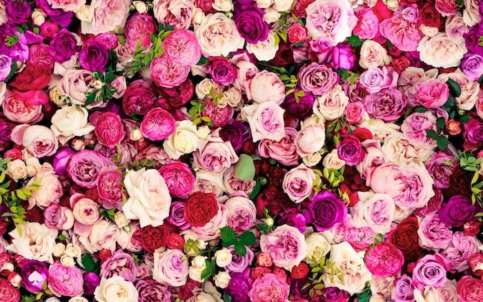 cute wallpapers for girls lots of flowers in different shades of pink roses and peony flowers with green leaves