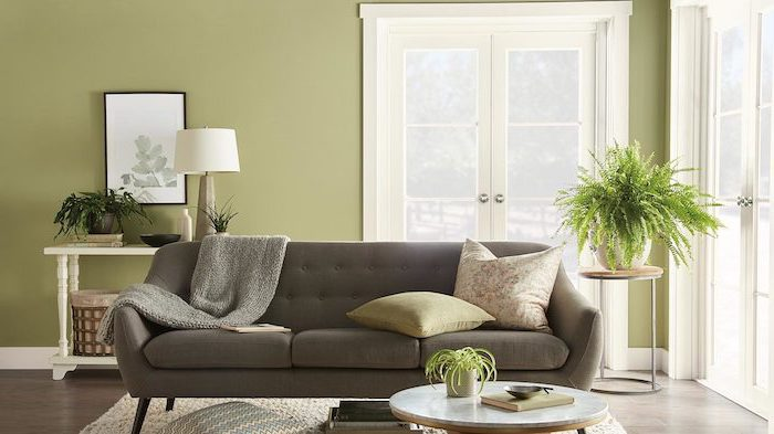 dark grey sofa in front of pastel green wall colors that go with grey white carpet on wooden floor