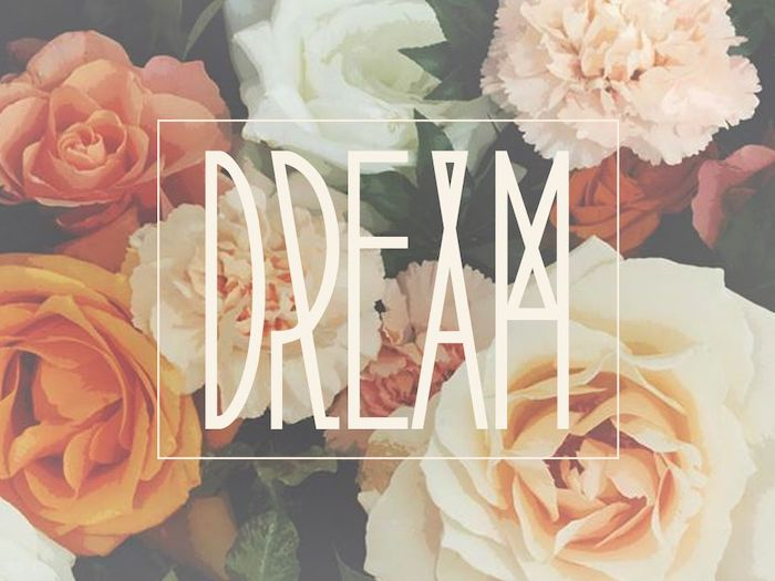 dream written with large white letters in the middle cute iphone wallpaper white pink orange roses floral background