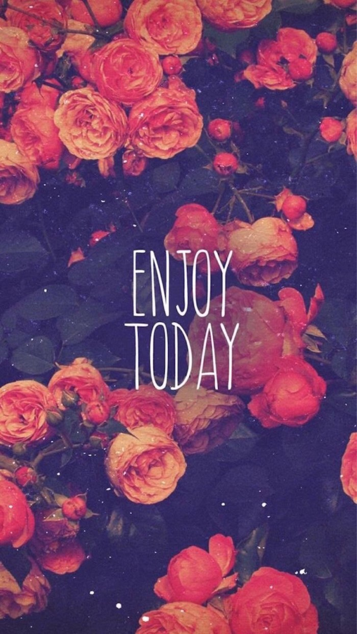 enjoy today written with white letters in the middle beautiful wallpaper for phone pink roses bush in the background
