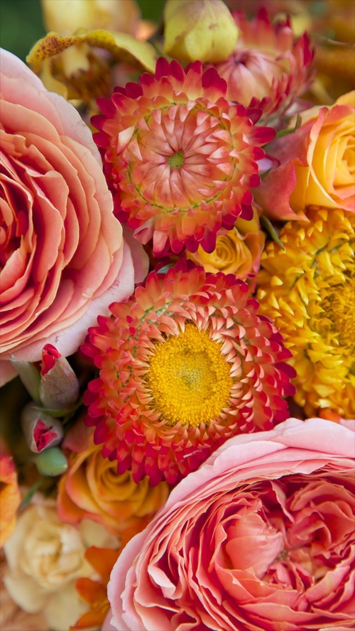 flower arrangement with pink orange yellow flowers cute flower wallpapers close up photo