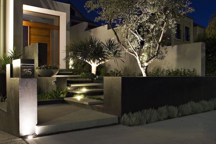 lit tiled staircase leading to wooden door front of house landscaping surrounded bt small bushes and trees succulents
