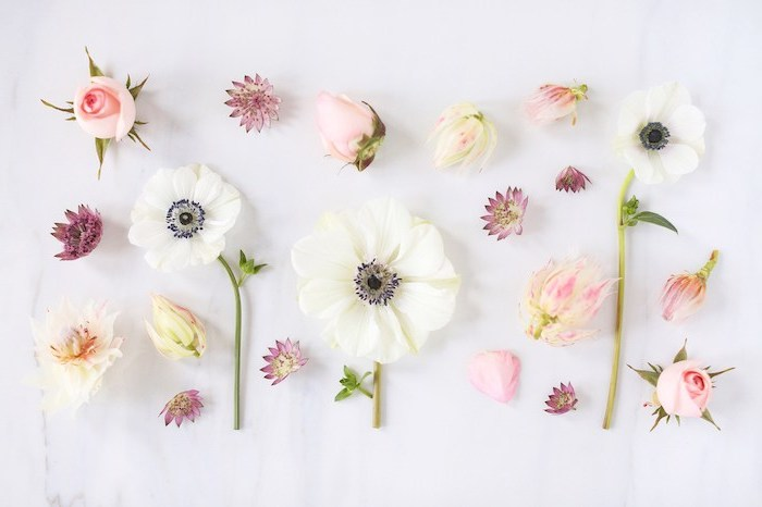pink white purple flowers arranged on white surface vintage flower background photographed from above