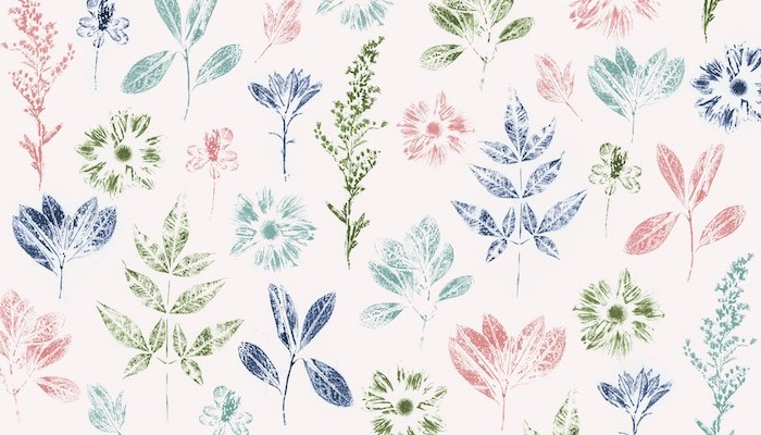 pretty flower backgrounds drawings of pink blue green flowers plants drawn on white background