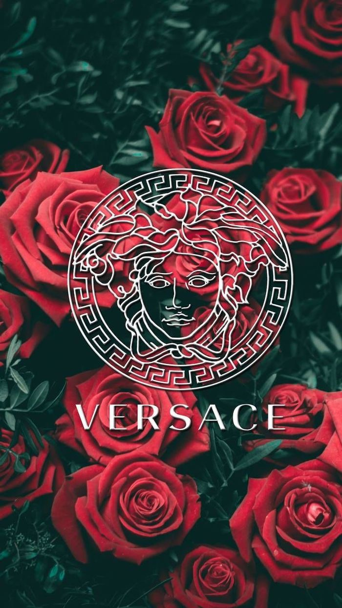 red roses in the background nature iphone wallpaper versace logo in white in the middle