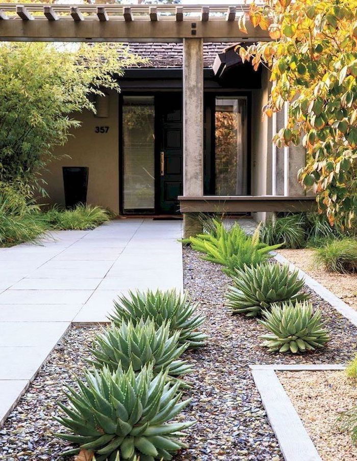 succulents aloe vera planted in gravel next to tiled pathway leading to black front door simple landscaping ideas