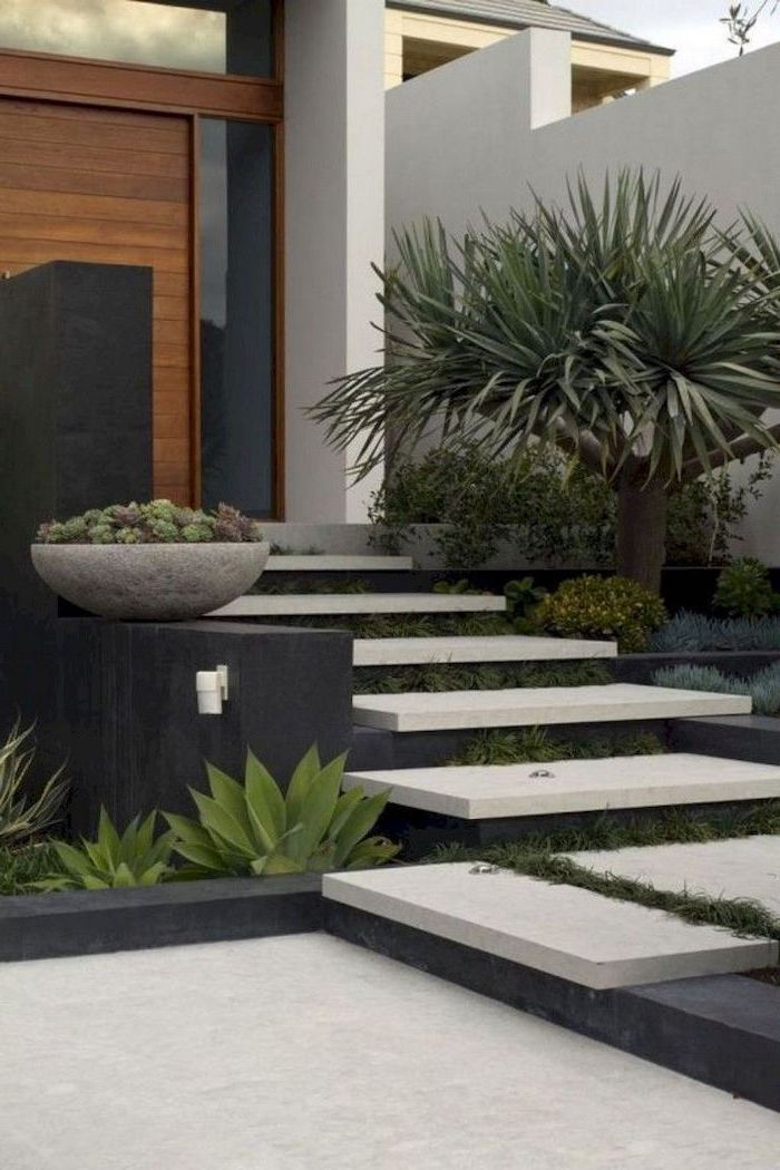 white levelled tiles stairase leading to large wooden door cheap landscaping ideas surrounded by bushes succulents and palm tree