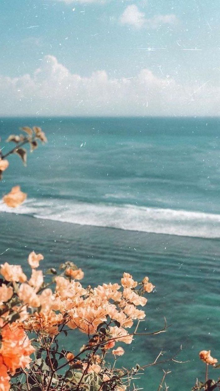 aesthetic vsco wallpapers photo of blue waves crashing blue sky with clouds above it orange flowers at the forefront