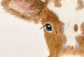 How to draw animals – inspiration and step-by-step tutorials