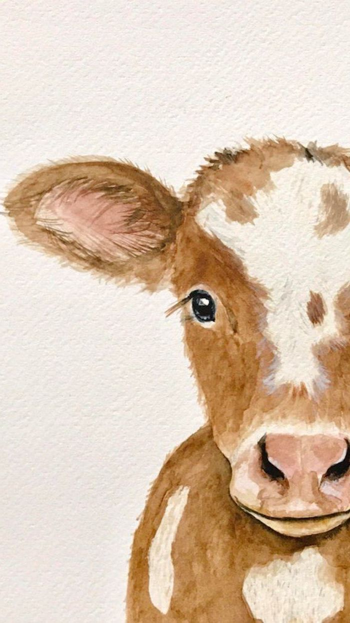 baby cow watercolor drawing on white background easy animal sketches half of its head drawn in brown with white spots