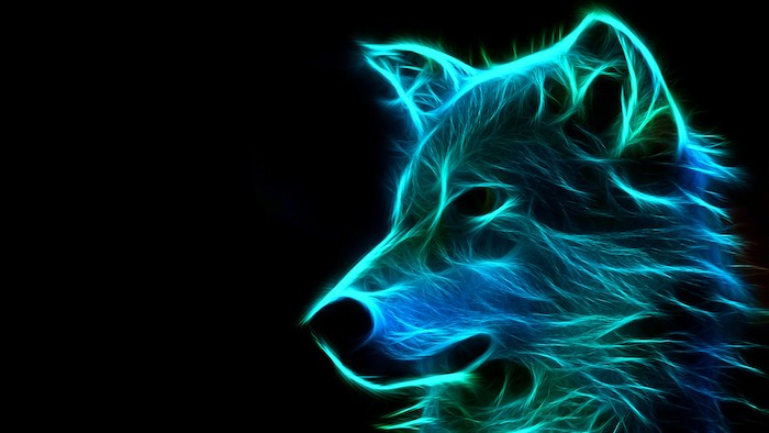 black background free wallpaper for computer neon silhouette of wolf head in blue and green