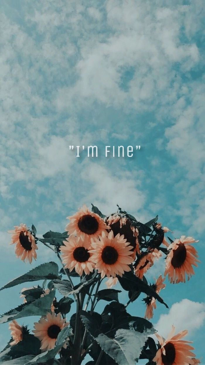 blue sky with clouds im fine written on it vsco wallpaper sunflowers on the bottom under the sign