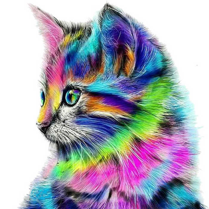 cat drawn in different colors easy animal sketches profile of a kitten with the colors of the rainbow