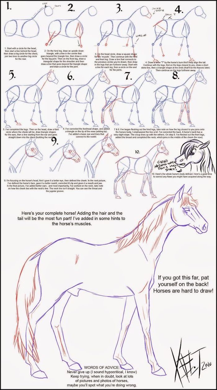 diy tutorial step by step with explanation how to draw a hotse easy animals to draw pencil sketch on white background