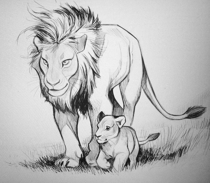 drawing of a lion with its cub how to draw animals easy black pencil drawing on white background