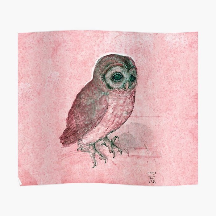 drawing of an owl in abstract colors how to draw animals step by step pink and green owl drawn on pink background