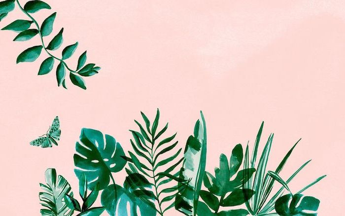green palm leaves butterfly drawn in watercolor on the bottom of pink background cool computer backgrounds