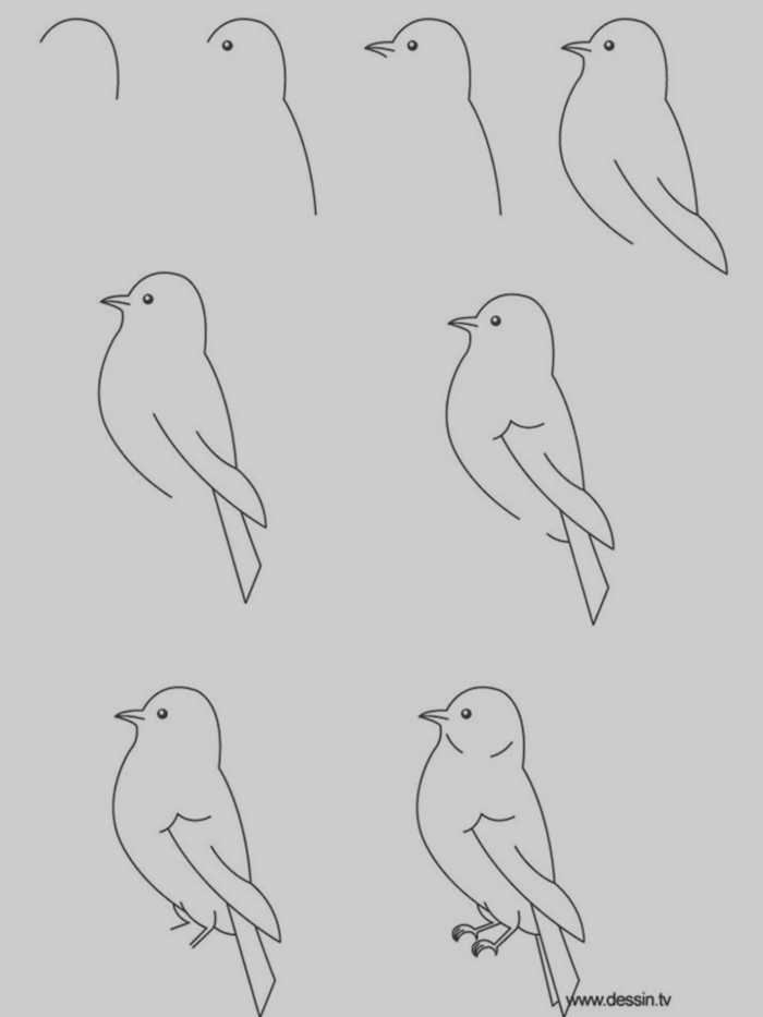 how to draw a bird in eight steps cute animal drawings easy black pencil drawing on white background