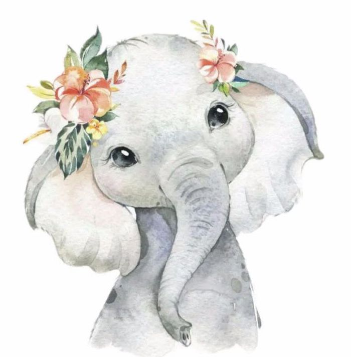 how to draw animals baby elephant painted with watercolor in gray with orange flowers on its head white background