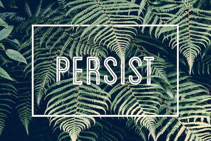 persist written with large white letters high resolution desktop wallpaper green leaves in the background dark green aesthetic