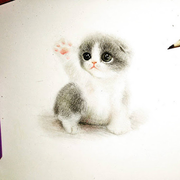 pictures of animals to draw small kitten realistic drawing in black white and pink drawn on white background
