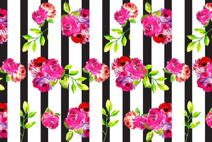 roses in pink and orange in a few bunches desktop backgrounds black and white striped background