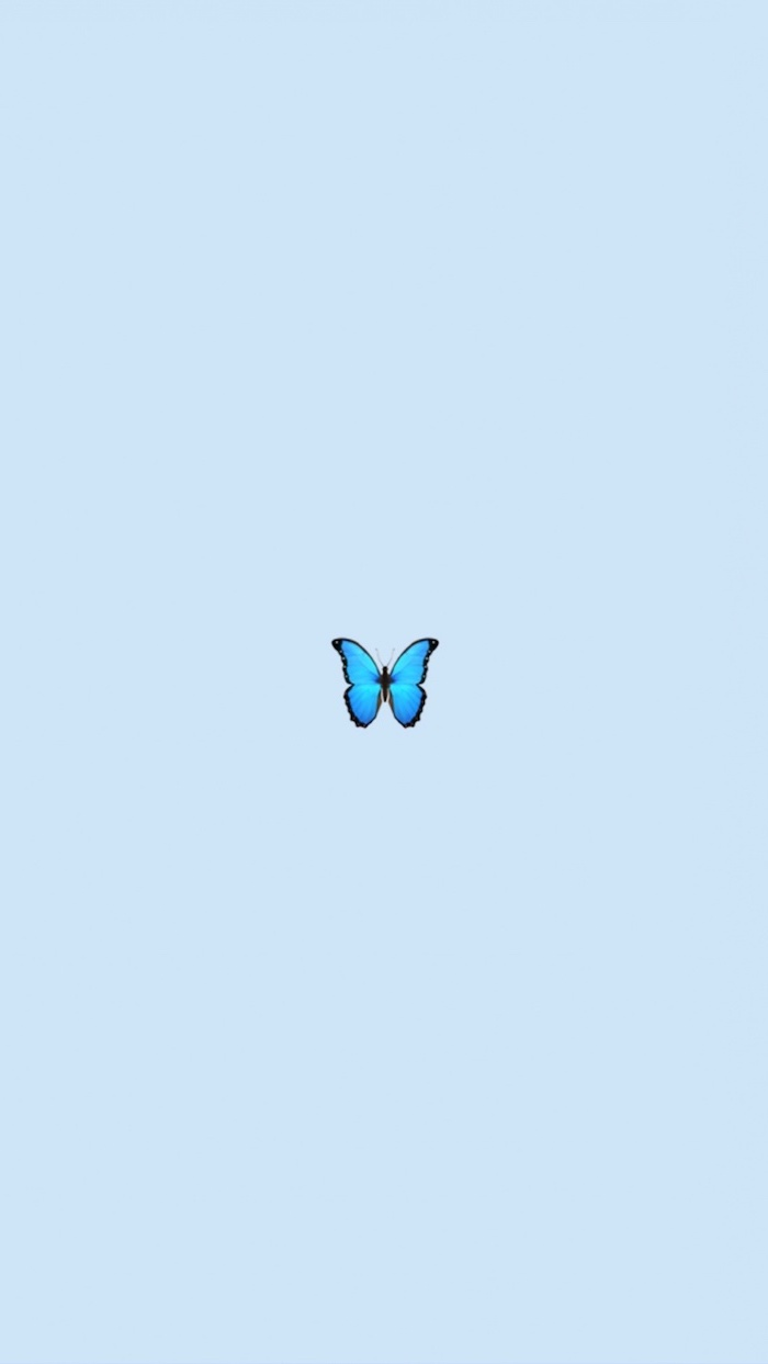 small blue butterfly in the middle of light pastel blue background vsco girl backgrounds