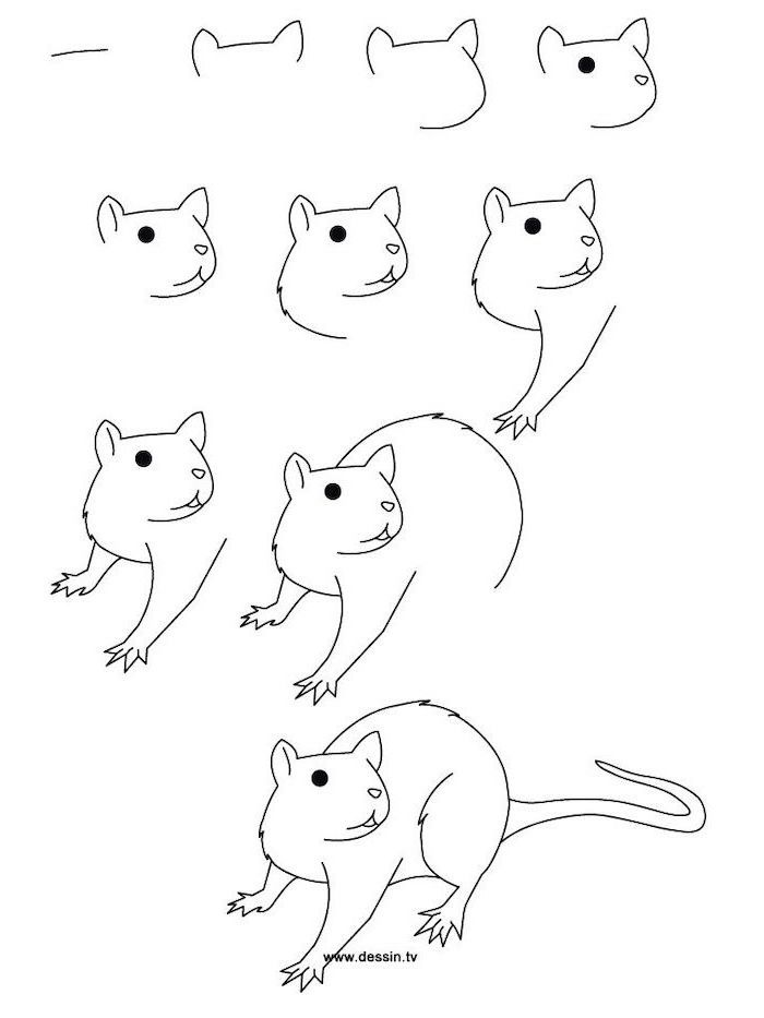 step by step diy tutorial how to draw a mouse how to draw animals black pencil sketch on white background