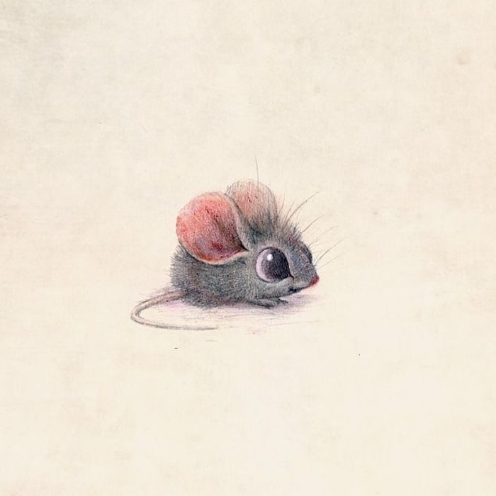 step by step drawing animals colored pencil drawing of a small cartoon mouse drawn on white background
