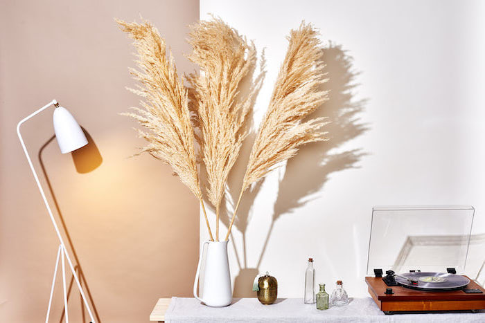 beige and white wall faux pampas grass wooden bench with vinyl player and white ceramic vase on top