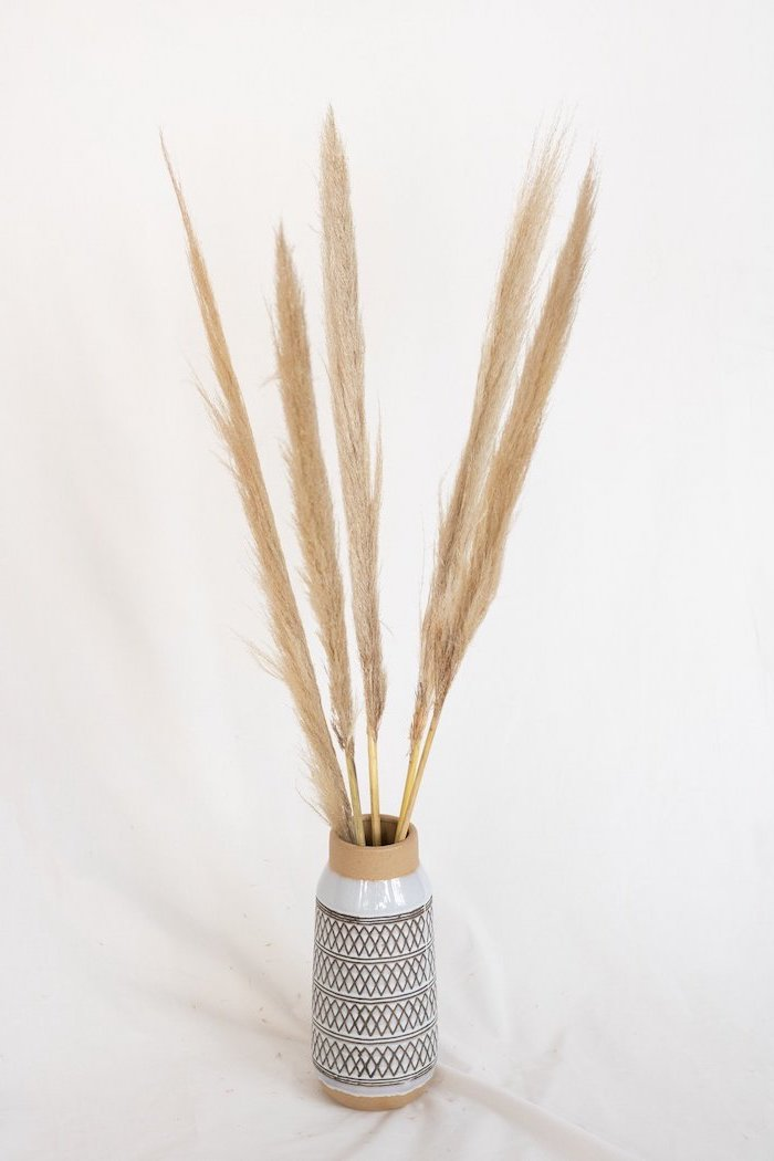 black and white ceramic vase filled with dried pampas grass photographed on white background pampas grass decor