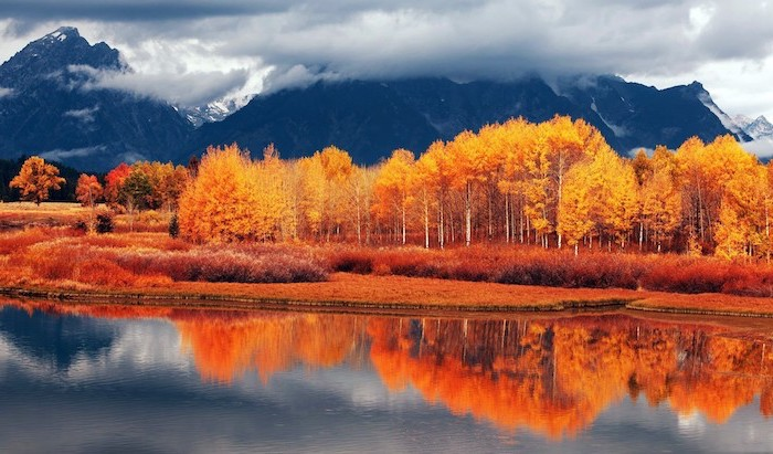 cute fall wallpaper lake surrounded by trees and bushes with yellow orange leaves mountain range in the background