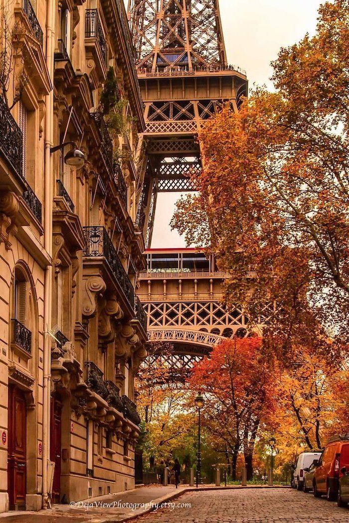 eiffel tower in the background photo taken from street autumn desktop wallpaper tall trees with orange yellow leaves