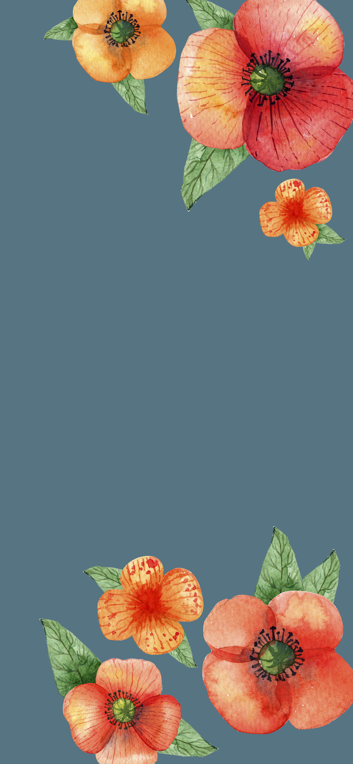 fall wallpaper for android blue background drawings of three flowers in watercolor red orange green in both corners