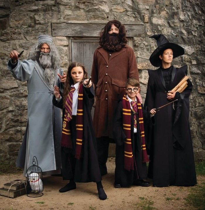 harry potter inspired costumes family halloween costumes hagrid dumbledore hermione mcgonagall harry costumes