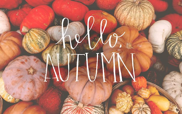 hello autumn written in white cursive font over a photo of pumkpins in different colors and shapes autumn wallpaper