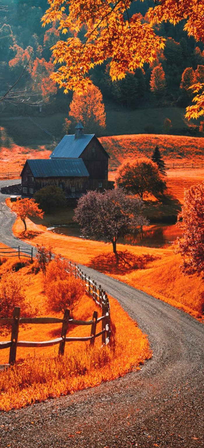 pathway leading to a house in the middle of field with orange grass cute fall wallpaper iphone