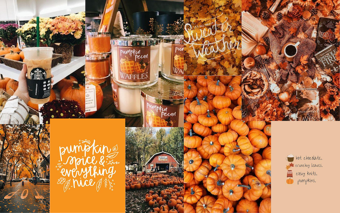 photo collage of photos of pumpkins candles pumpkin spice coffee fall iphone wallpaper street with tall trees with falling leaves