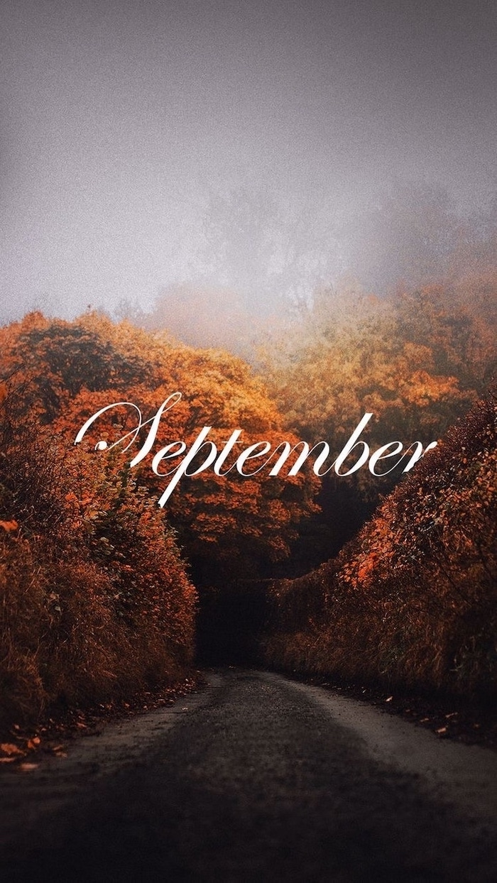 september written with white cursive font in the middle cute fall wallpaper iphone pathway between tall trees with orange yellow leaves