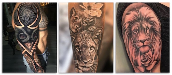 animal tattoos three side by side photos forearm tattoos for men owl lion cub lioness lion with rose