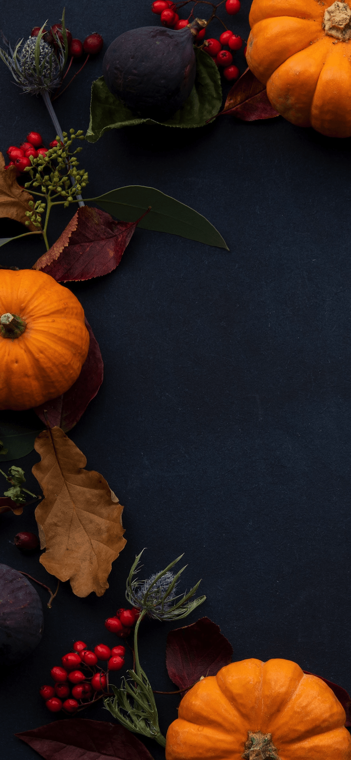 black background happy thanksgiving wallpaper pumpkins cranberries leaves arranged together on the side