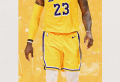 Lakers Wallpaper To Celebrate Their 17th Championship