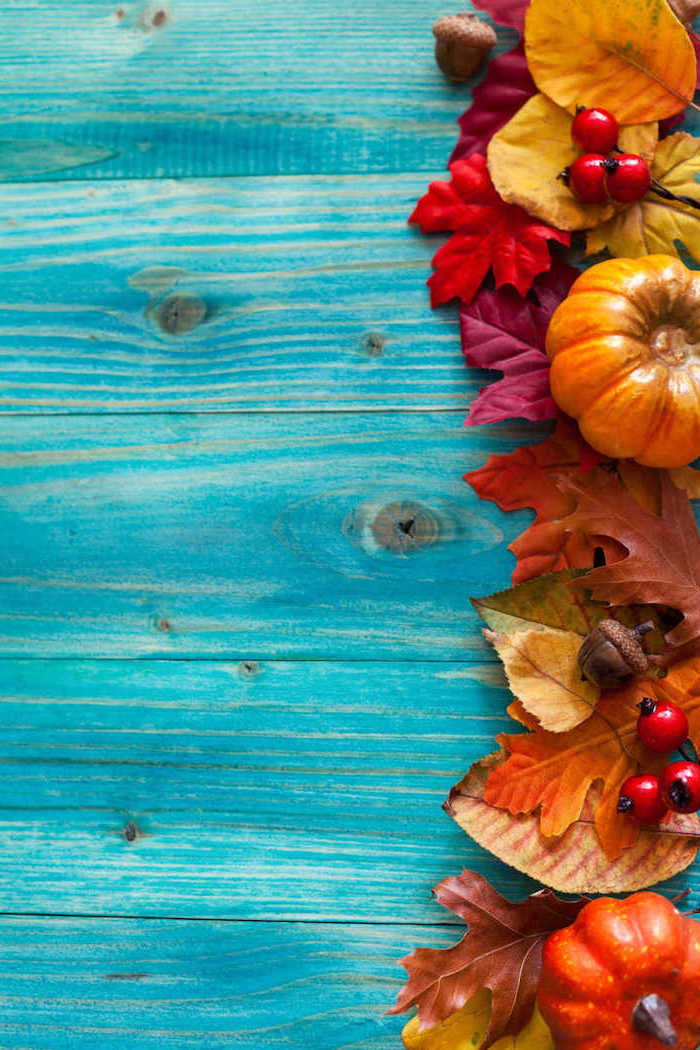 fall leaves pumpkins cranberries on the side thanksgiving wallpaper hd arranged on blue wooden surface