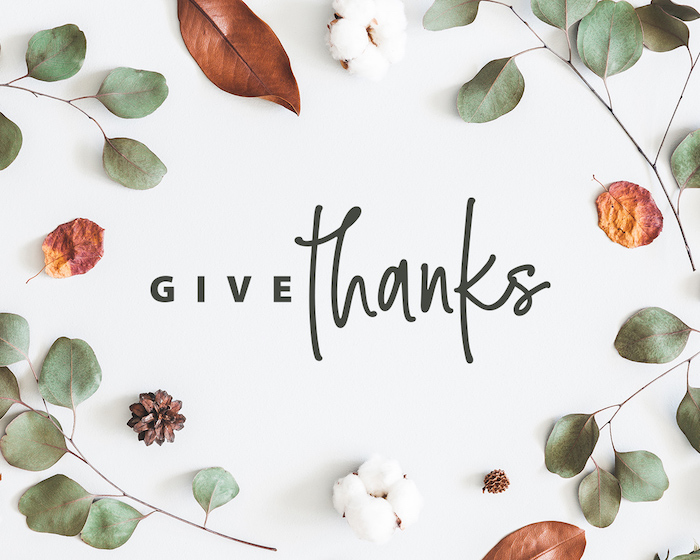 give thanks written in black on white background surrounded by dried fall leaves pine cones thanksgiving wallpaper